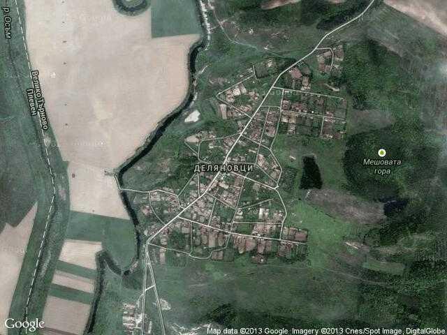 Сателитна карта на Деляновци