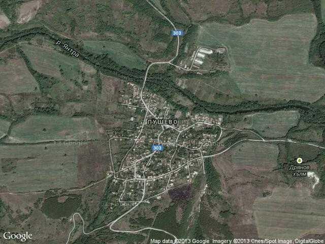 Сателитна карта на Пушево