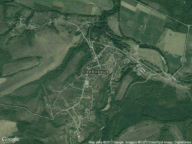 Сателитна карта на Сливовица