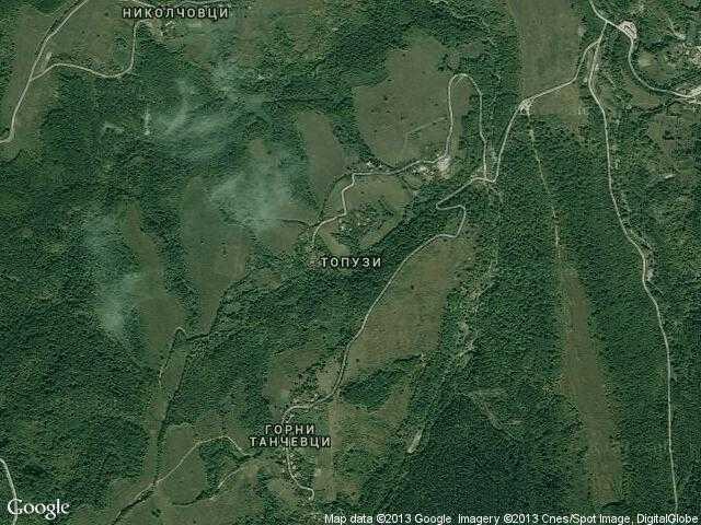 Сателитна карта на Топузи