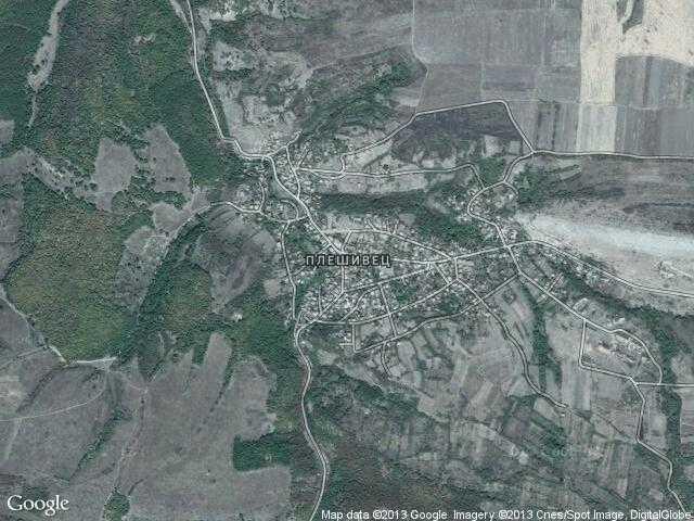 Сателитна карта на Плешивец