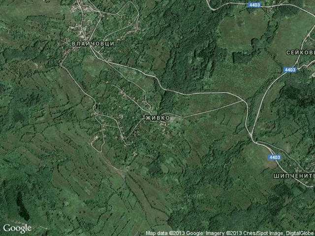 Сателитна карта на Живко