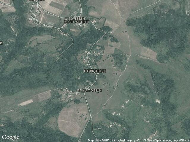 Сателитна карта на Петковци