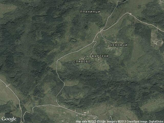 Сателитна карта на Сливово