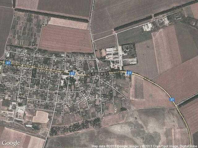 Сателитна карта на Сенокос