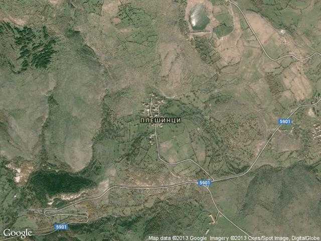 Сателитна карта на Плешинци
