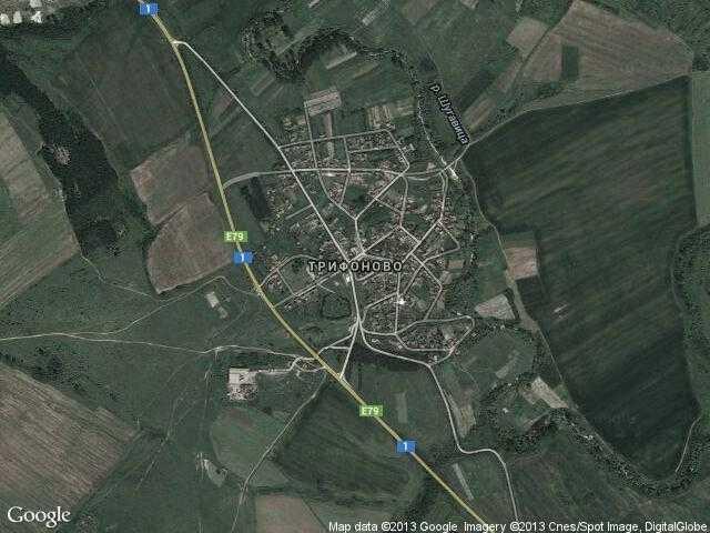 Сателитна карта на Трифоново