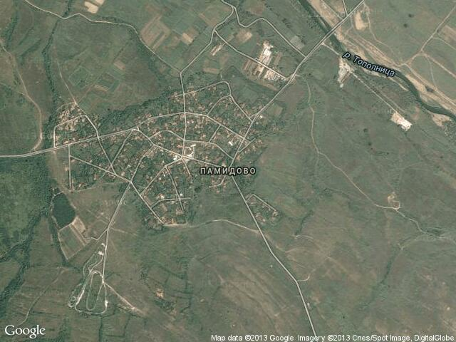 Сателитна карта на Памидово