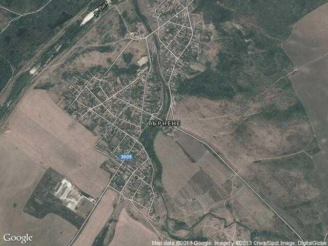 Сателитна карта на Търнене
