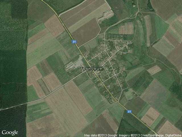 Сателитна карта на Търновци