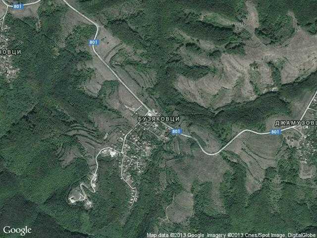 Сателитна карта на Бузяковци