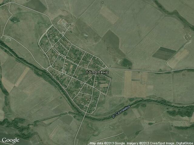 Сателитна карта на Тополяне
