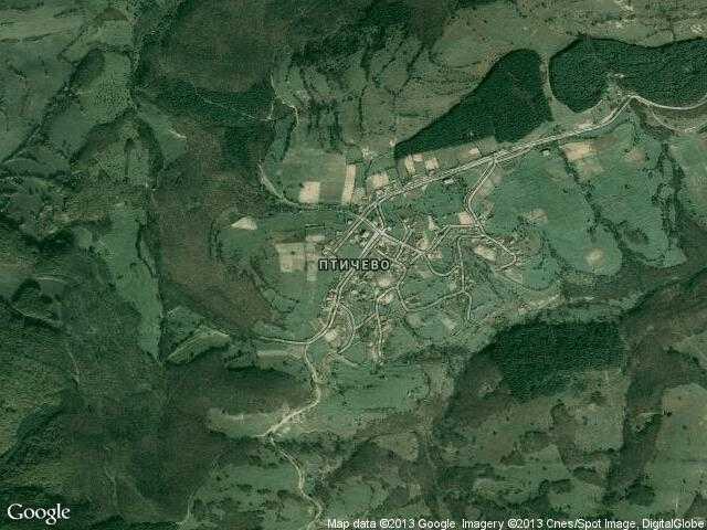 Сателитна карта на Птичево