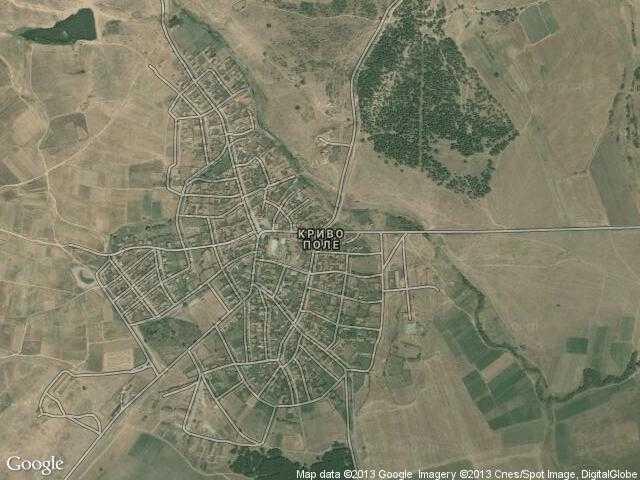 Сателитна карта на Криво поле