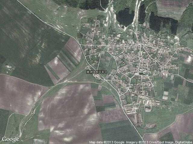 Сателитна карта на Живково