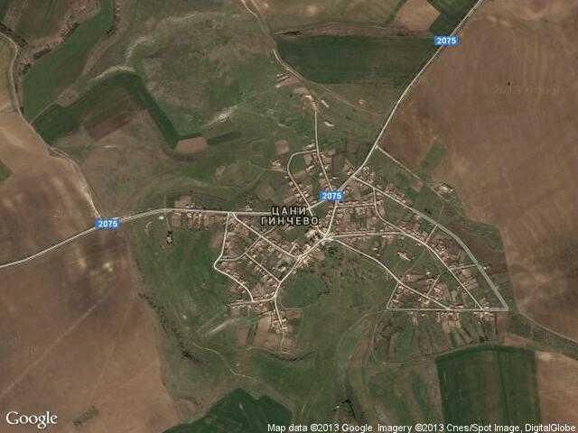 Сателитна карта на Цани Гинчево